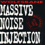 Massive Noise Injectoin